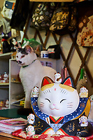 Taïwan, district de New Taipei, Houtong village, Village des chats, boutique de souvenirs // Taiwan, New Taipei county, Houtong Cat Village, souvenir shop