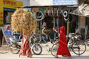 Indian women walking in the street, one carrying straw bale on head, in Nandi near Varanasi, Benares, Northern India