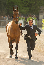 Albert Hermoso Farras (ESP) leads Hito CP for the vet's inspection during the trot up at the 2013 Mitsubishi Motors Badminton Horse Trials. Thursday 02  May  2013.  Badminton, Gloucs, UK..Photo by: Mark Chappell / i-Images