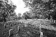 Arlington Cemetery headstones, black and white