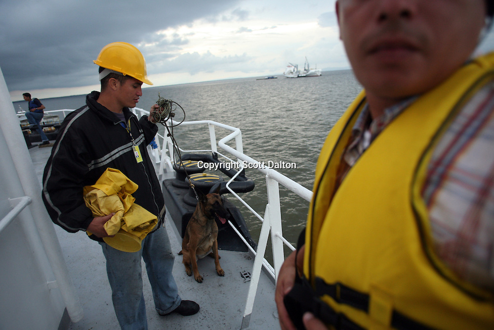 A security guard holds a drug-sniffing dog on the deck of a ship that is exporting bananas from Colombia, in the Gulf of Turbo, along Colombia?s northern coast, on July 10, 2007. Colombia?s banana region has long a stronghold for illegal armed groups who apparently funded their wars by taxing the banana industry. American banana executives of the Cincinnati-based fruit giant Chiquita have acknowledged making monthly protection payments for six years to illegal groups that killed thousands of people. (Photo/Scott Dalton)