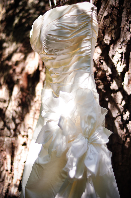 Kelly's Dress hung in the willow trees