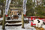 Katt-templet p&aring; Tashirojima. <br /> <br /> &Ouml;n som kallas f&ouml;r &quot;katt&ouml;n&quot; eftersom h&auml;r lever hundratals katter tillsammans med ca 50 personer.   <br /> <br /> Ishinomaki, Miyagi Prefecture, Japan. <br /> <br /> Fotograf: Christina Sj&ouml;gren<br /> Copyright 2018, All Rights Reserved
