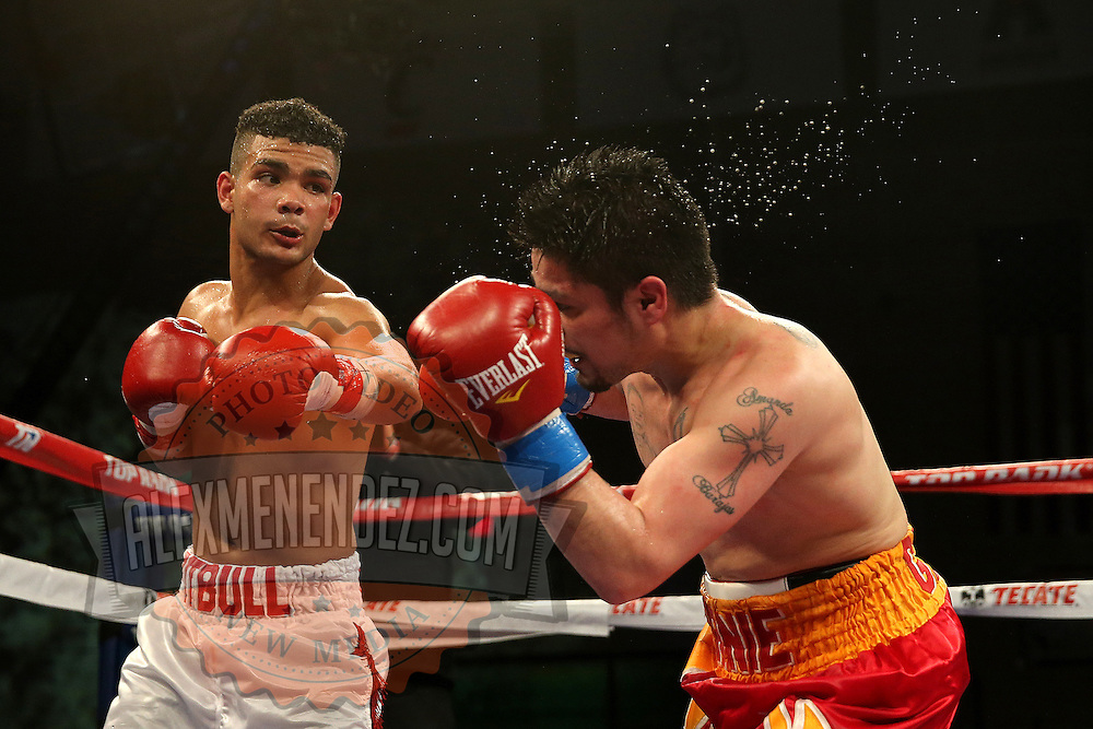 TAMPA, FL - FEBRUARY 28:  Neslan Machado( L) lands a left hook on Ernesto Garza during the SoloBoxeo Tecate boxing match at the University of South Florida Sundome on February 28, 2015 in Tampa, Florida. Machado won the bout by decision.  (Photo by Alex Menendez/Getty Images) *** Local Caption *** Ernesto Garza; Neslan Machado