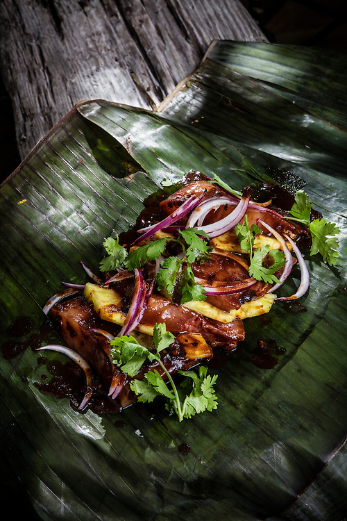 Mahi Mahi with guajillo and pineapple wrapped in banana leaves  -- photographed for Chef Alan Hughes' seafood cookbook