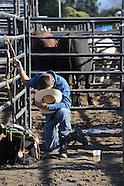 "USA ""Professional Bull Riding 2013, Salinas"" 2013"