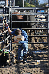 A bull rider prays in the late aftenoon light before Wednesday's 2013 PBR Touring Pro Division event at the Salinas Sports Complex.