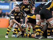 Wycombe, GREAT BRITAIN,   Wasps', Mark ROBINSON, passes the ball out from the backk of the scrum during the Guinness Premiership rugby game, London Wasps vs Northampton Saints, at Adam's Park Stadium, Bucks, England, on Sun 22.02.2009. [Photo, Peter Spurrier/Intersport-images]