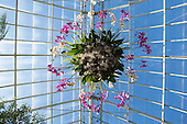 15.03.12 - NYBG Orchid Chandelier