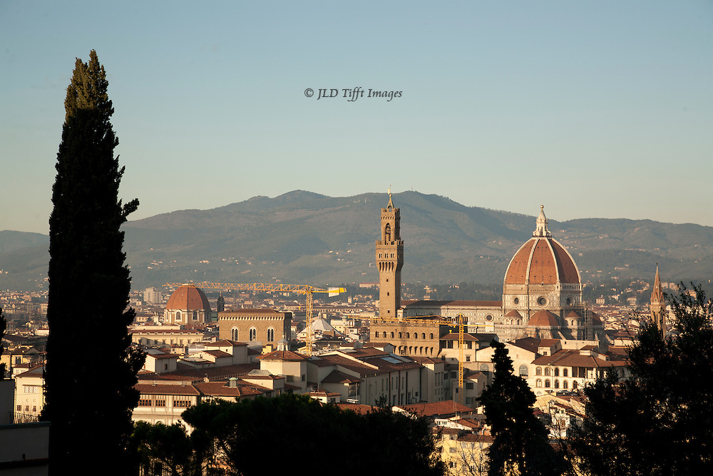 I decided that including a cypress tree would add a certain punctuation mark to the standard view of the Palazzo Veccio and the cathedral dome.