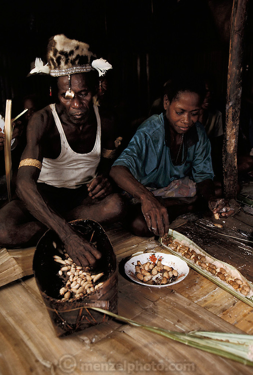 Two villagers prepare a dish made of sago grubs (Rhynchophorus ferrugineus, the larvae of Capricorn beetles), and sago flour wrapped in sago palm leaves. The packets are then roasted in the fire to prepare for eating, in Sawa Village, Irian Jaya, Indonesia. The resulting dish is like a cooked pastry, with a chewy, slightly sweet crust and the grubs taste like fishy bacon. Image from the book project Man Eating Bugs: The Art and Science of Eating Insects.