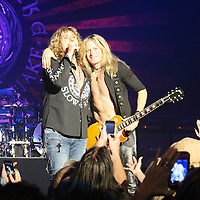 Whitesnake in Concert Raleigh 7/30/2013
