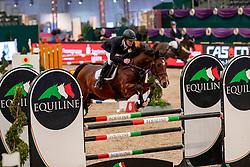 SCHLIECKMANN Roman (GER), Cedric S<br /> Leipzig - Partner Pferd 2019<br /> SPOOKS-Amateur Trophy<br /> Medium Tour<br /> 17. Januar 2019<br /> © www.sportfotos-lafrentz.de/Stefan Lafrentz