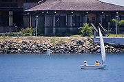 Kids Sailing In The Dana Point Harbor 1982