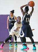Lashann Higgs guards McNeil's Diamond Caro Saturday at Cedar Ridge Gym.  The Lady Raiders won 84-39.  (LOURDES M SHOAF for Round Rock Leader.)