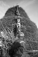 La fotografia ritrae un ragazzo intento ad aiutare nel lavoro di realizzazione della FÚcara di Novoli e sottolinea la continuit? delle tradizioni tra generazioni. La FÚcara, la cui costruzione inizia la mattina del 7 gennaio, Ë dedicata a Sant'Antonio Abate ed Ë costituita da un falÚ realizzato con fascine di tralci di vite (sarmente) recuperate dalla rimonta dei vigneti. Sulla cima della fÚcara, la mattina della Vigilia, viene issata un'artistica bandiera sulla quale Ë l'immagine del Santo. L'accensione della FÚcara avviene attraverso una batteria-fiaccolata. Una volta accesa, la FÚcara arde tutta la notte dando vita al fenomeno detto delle fasciddre, le faville che, nell'aria, somigliano ad una pioggia di fuoco. (fonte http://www.comune.novoli.le.it/focara/storia_focara.php).