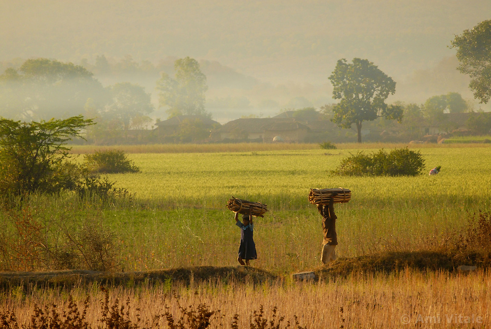 Chitrakoot District, Uttar Pradesh, India: A man and a young child use their heads to carry wood back to their village to be used for heating and cooking. In India woman are responsible for carrying out many hard labored tasks. Chitrakoot District in Uttar Pradesh, India.  (Photo by Ami Vitale)