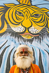 Old man with thick white beard stands in front of a painting of a large tiger head along the Ganges River, Varanasi, Uttar Pradesh, India