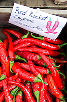 A crate of Red Rocket Cayenne peppers at the Common Ground Fair farmers market, Unity Maine.