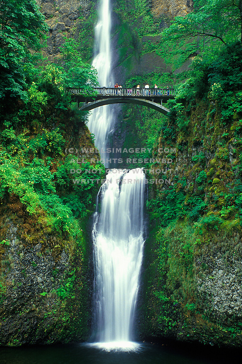 Image of Multnomah Falls along the Historic Columbia River Highway, Oregon, Pacific Northwest