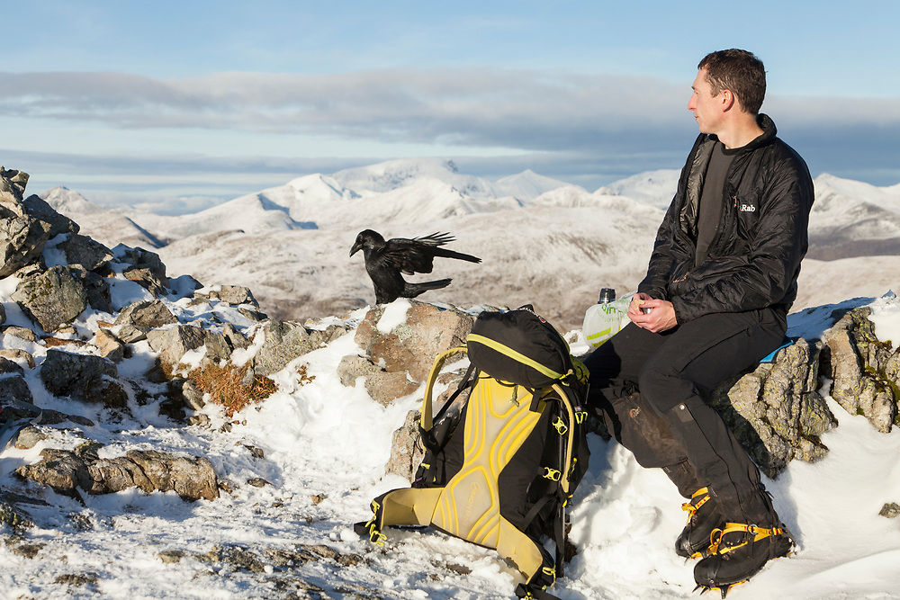 Hill walker eating lunch on summit cairn in Glen Coe with Raven nearby looking for food scraps.