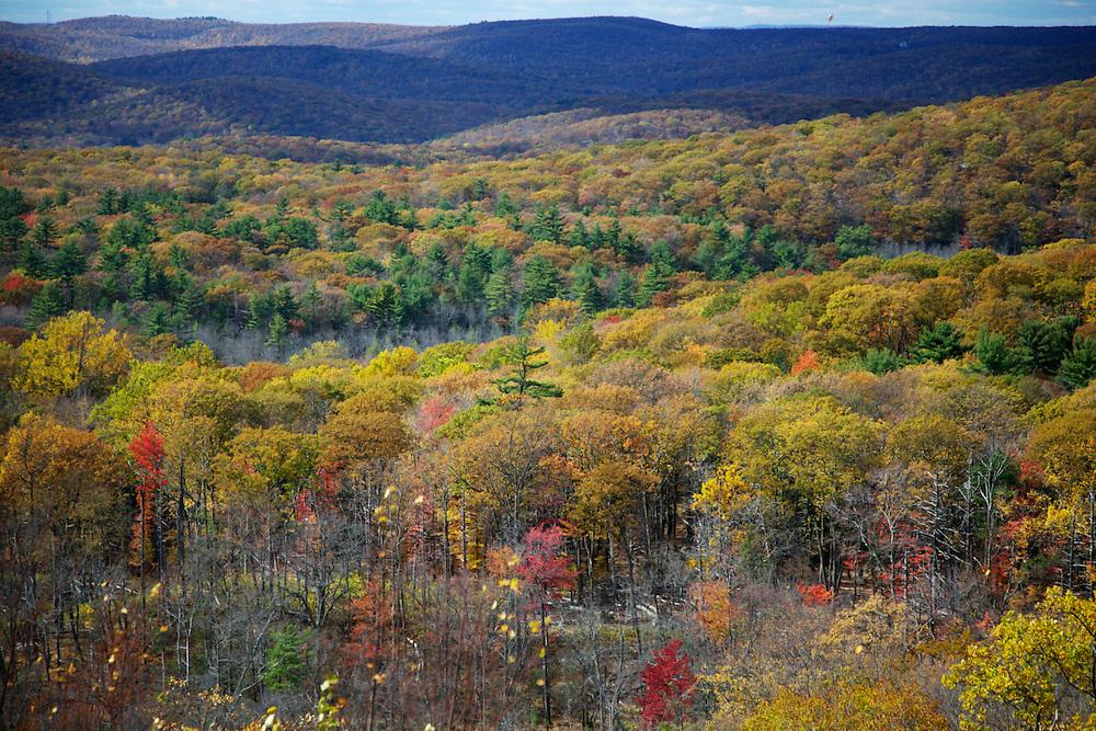 Fall Hike in New York