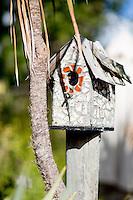 tatahi lodge hahei holiday accommodation on the coromandel peninsula by coromandel photographer felicity jean photography real estate photographer