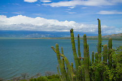 Lago Enriquillo in Dominican Republic