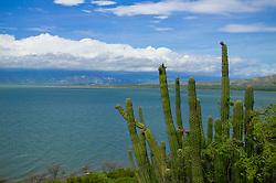 Lago Enriquillo in Dominican Republic
