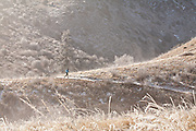 One man trail running at Matthews/Winters Park near Denver, Colorado