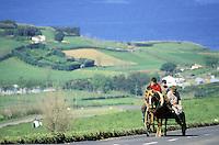 Portugal - Archipel des Açores - Île de Sao Miguel