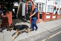 © Licensed to London News Pictures. 30/08/2019. London, UK. A police search dog on Willan Road in Tottenham, north London where a teenage boy was stabbed this morning. The victim has been taken to a hospital and according to the police he is in a critical condition. Photo credit: Dinendra Haria/LNP