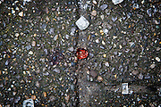Brussels 23 March 2016  a subway entrance where the floor is filled with shattered glass and some bloodstains