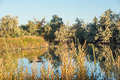 Hagerman Wildlife Management Area