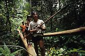 Nomadic Penan Hunter Gatherers Rainforest Sarawak