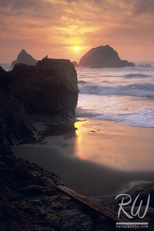 Seal Rocks at Sunset, San Francisco, California