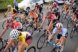 The peloton pass by not seeming concerned by the breakaway three at the 116 km Stage 5 of the Boels Ladies Tour 2016 on 3rd September 2016 in Tiel, Netherlands. (Photo by Sean Robinson/Velofocus).