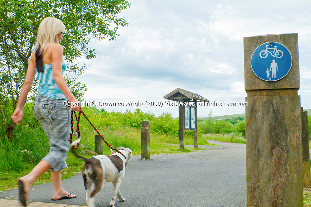 Young girl walking her dog<br /> Bryn Bach Country Park<br /> Near Tredegar<br /> Blaenau Gwent<br /> South<br /> Country Parks<br /> Tourist Attractions