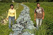 agriculture<br /><br />André Samson et Sylviane Tardif<br />302 chemin Boulais à Farnham<br />450-248-0775
