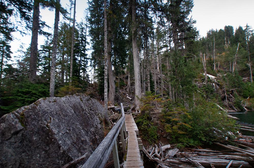 Wooden Footbridge Over Bridal Veil Creek at Outlet of Lake Serene, Mt. Baker-Snoqualmie National Forest, Washington, US