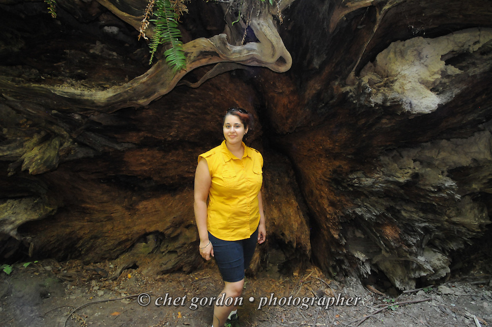 Natasha in front of a fallen Redwood tree in the Jedidiah Smith Redwoods State Park in Crescent City, CA on Monday, July 25, 2016.  © Chet Gordon • Photographer