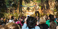 """Woodland Heights Elementary School was transformed into a tropical rainforest Monday evening as Mike Kohlrieser's Macaw """"Kelly"""" delights the audience as she flies over their heads during the Understanding Wildlife Show. (Karen Bobotas/for the Laconia Daily Sun)"""