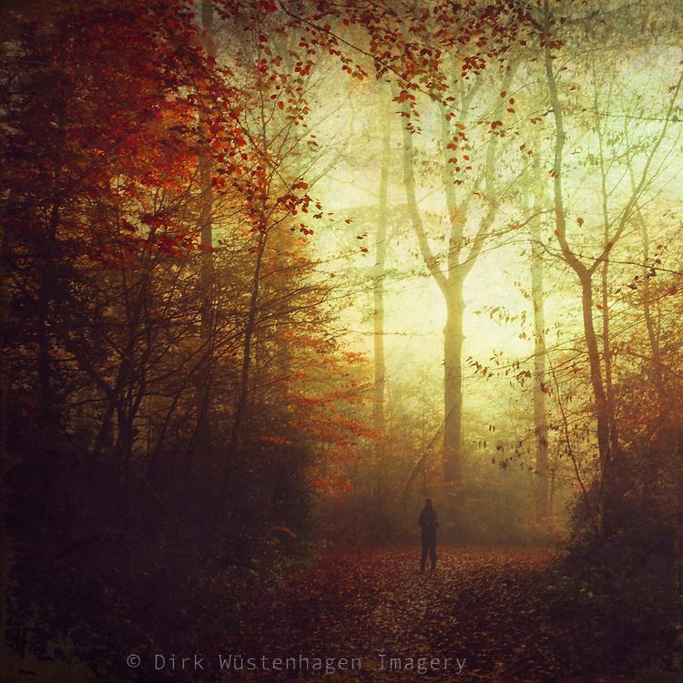 Person auf Waldweg im Herbst, Wuppertal, Deutschalnd