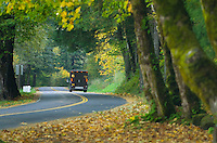Historic Columbia River Highway, Columbia River Gorge National Scenic Area Oregon
