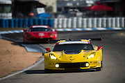 March 17-19, 2016: Mobile 1 12 hours of Sebring 2016. #3 Antonio Garcia, Jan Magnussen, Mike Rockenfeller, Corvette Racing, Corvette C7 GTLM