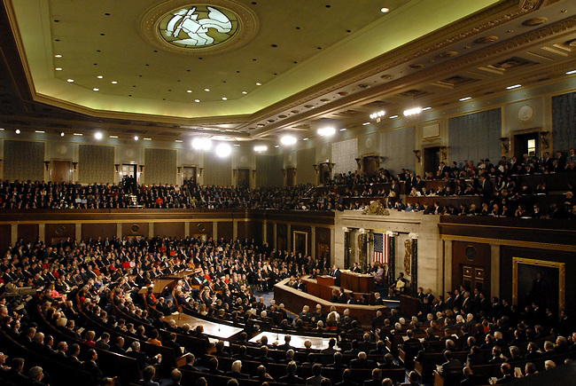 Members of both the US Senate and US House of Representatives  listen to President George Bush presents is final State of the Union Address to a joint session of the US Congress on Capitol Hill on January 28, 2008