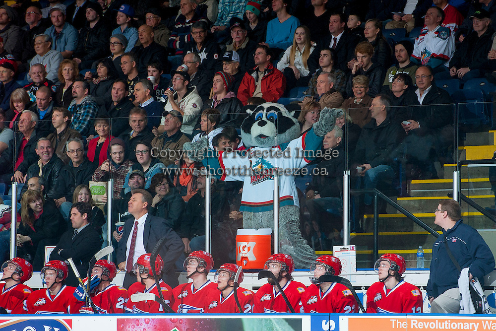 KELOWNA, CANADA -JANUARY 29: Rocky Racoon, the mascot of the Kelowna Rockets mocks the bench of the Spokane Chiefs after the Kelowna Rockets score a goal on January 29, 2014 at Prospera Place in Kelowna, British Columbia, Canada.   (Photo by Marissa Baecker/Getty Images)  *** Local Caption *** Rocky Racoon;