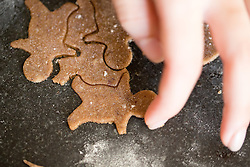 THEMENBILD - in der Adventzeit werden traditionell in den Küchen im ganzen Land wieder Weihnachtskekse aller Art hergestellt. Der ganz besondere Geschmack der eigenen Kekse von Mama und Oma ist für viele einfach unverwechselbar, aufgenommen am 06.12.2016 in Baumkirchen // In the pre christmas season all types of traditional Christmas cookies are produced in kitchens all over the country. The very special taste of Mum or Grandmas own cookies is simply unmistakable, Baumkirchen, Austria on 2016/12/06. EXPA Pictures © 2016, PhotoCredit: EXPA/ Jakob Gruber