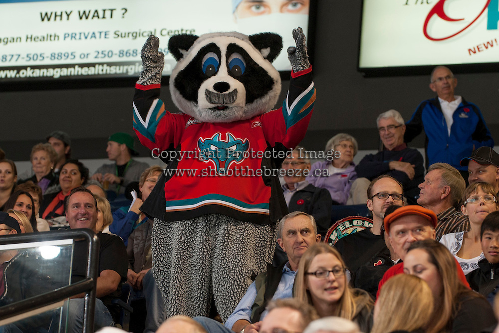 KELOWNA, CANADA - NOVEMBER 3:  Rocky Racoon, mascot of the Kelowna Rockets, shows off his mustache in support of Movember cancer awareness as the Prince George Cougars visit the Kelowna Rockets on November 3, 2012 at Prospera Place in Kelowna, British Columbia, Canada (Photo by Marissa Baecker/Shoot the Breeze) *** Local Caption ***