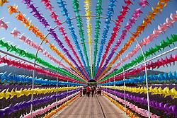 August 1, 2018 - Xinjiang, China - Colorful pinwheels line a walkway at the Kalajun Grasslands in northwest China's Xinjiang. (Credit Image: © SIPA Asia via ZUMA Wire)